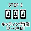 STEP3 キッティング作業(5~30日)