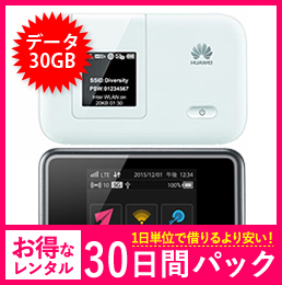【30GB】【30日レンタルパック】E5372 もしくは E5383