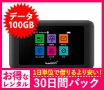 【100GB】【30日レンタルパック】601HW