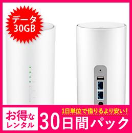 【30GB】【30日レンタルパック】Speed Wi-Fi HOME L01