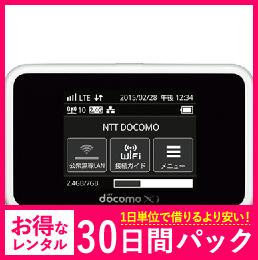 【30日レンタルパック】ドコモ HW-02G