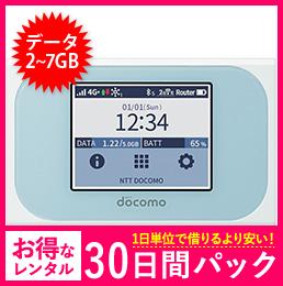 【30日レンタルパック】N-01J