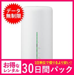 【無制限】【30日レンタルパック】HOME L02