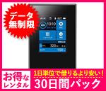 【無制限】【30日レンタルパック】Aterm MR04-LN