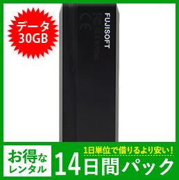 【30GB】【14日レンタルパック】+F FS040U USBタイプ
