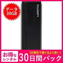 【30GB】【30日レンタルパック】+F FS040U USBタイプ