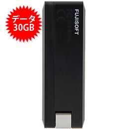 【30GB】+F FS040U USBタイプ