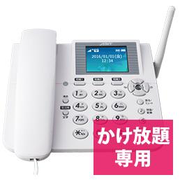 ホムテル 3G AK-010