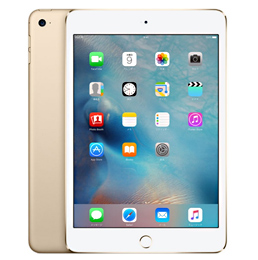 iPad mini4 cellular
